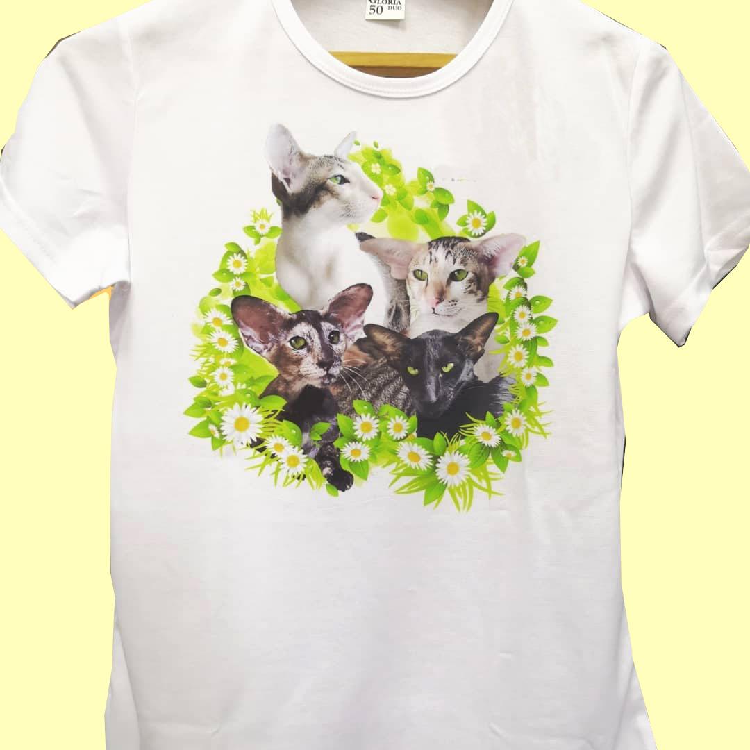 Печать на футболках в Омске